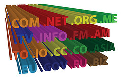 Domain Name Extensions